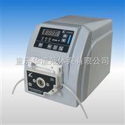 BT300-JE流量型蠕动泵