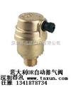 暖氣片排氣閥黃銅暖氣片排氣閥