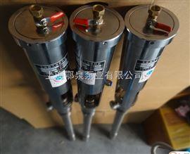 气动油桶专用泵FY1.2T-2气动防爆插桶泵