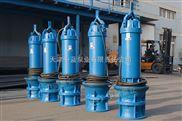 250KW大型潜水轴流泵/小型轴流泵简易安装