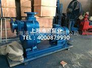 ZX自吸离心泵,自吸泵设计规范,铸铁的自吸泵