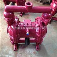 QBY型铸铁气动隔膜泵生产厂家 价格 结构图 型号参数
