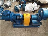 源鸿NYP30-1.0高粘度转子泵,果酱食品泵
