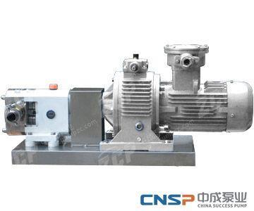 RP 系列不锈钢转子泵